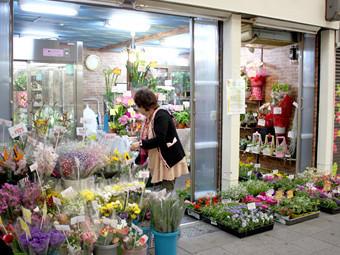 色とりどりの花々と良心的な価格の花屋